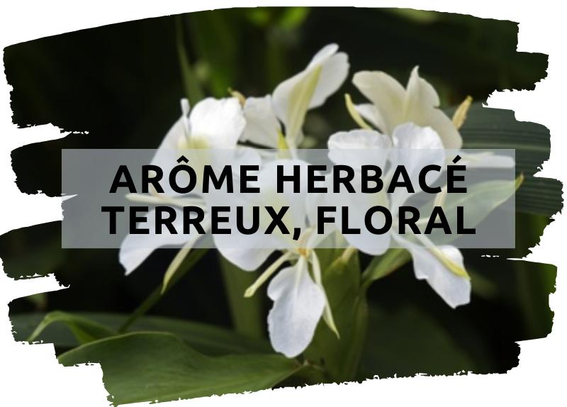 Arôma LÉger, Doux & Floral (2)